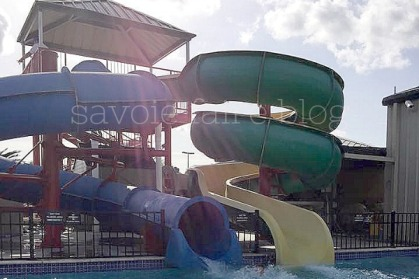 cajun palms slides I savoie faire blog