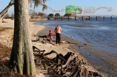 FONTAINEBLEAU BEACH I SAVOIE FAIRE
