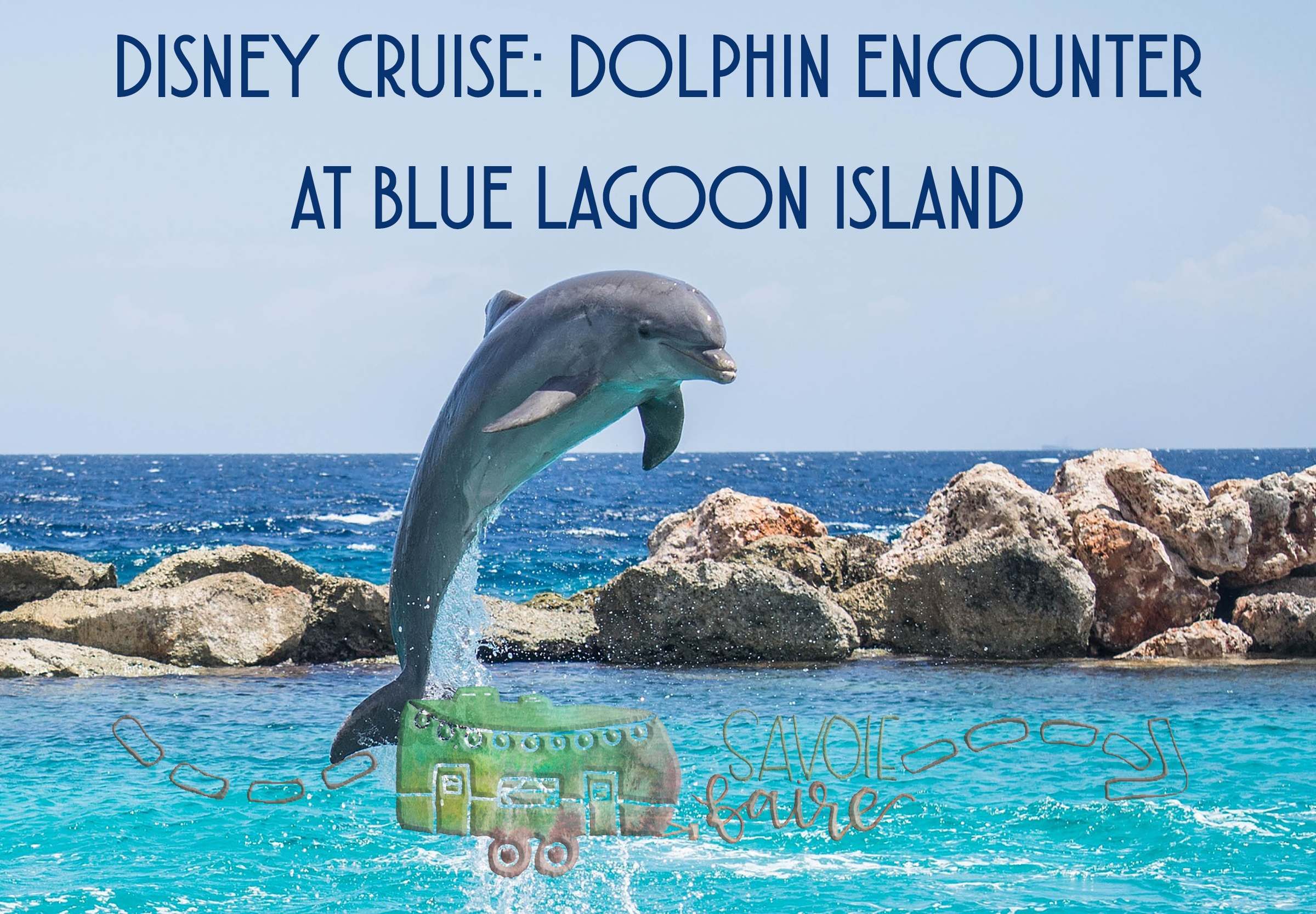 Disney Cruise Dolphin Encounter Savoie Faire