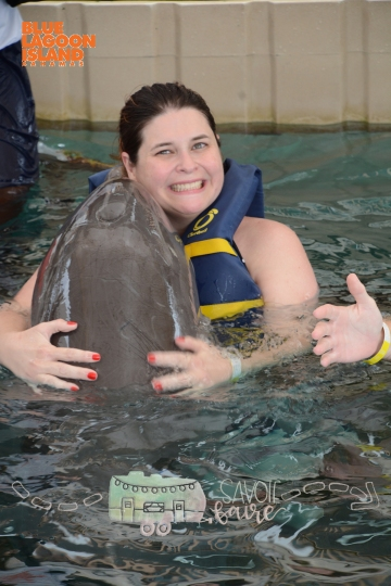 dolphin encounter 3
